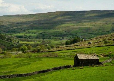 View from Swaledale House - Richard Mann at Swaledale Country Holidays