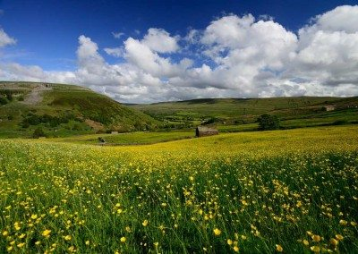 View of Kisdon Hill over the wildflower meadow from our holiday cottage in Swaledale